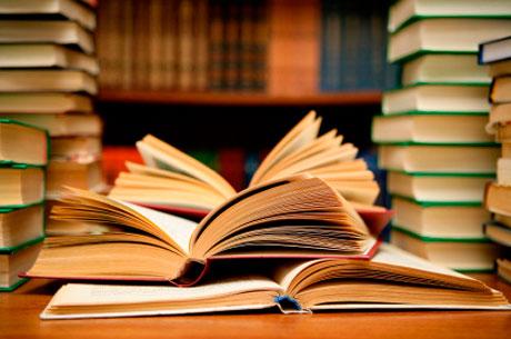 Presentación En La Biblioteca De Navarra Del Libro Letra Txikia. El Origen De Una Biblioteca Viva