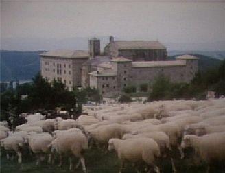 Trashumancia / La Cañada De Los Roncaleses
